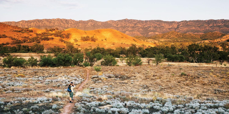 Visit Uluru-Kata Tjuta National Park