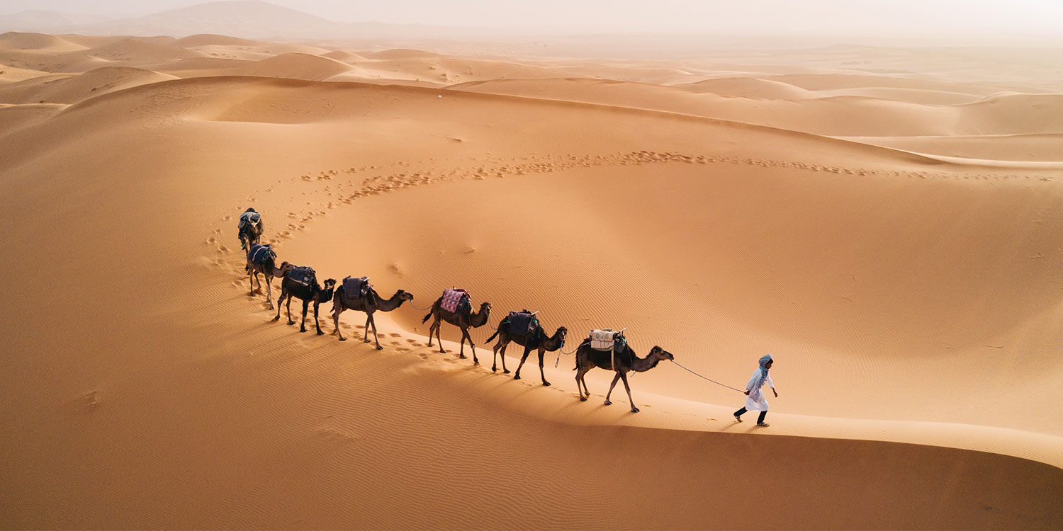 Explore Morocco from Marrakech - 12 Days