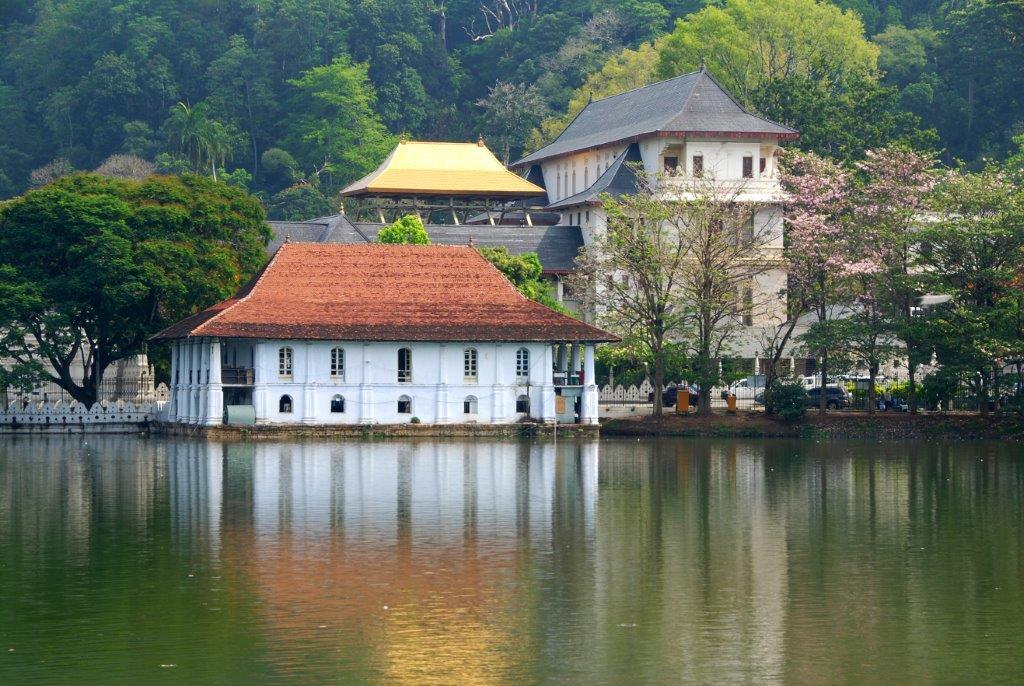 The Local Way - Sri Lanka