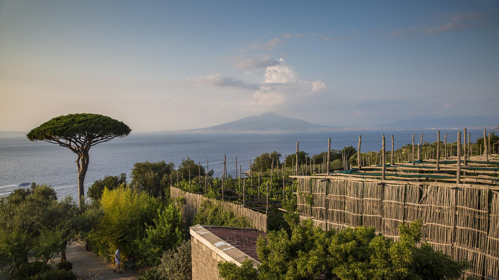 Local Living Italy—Sorrento