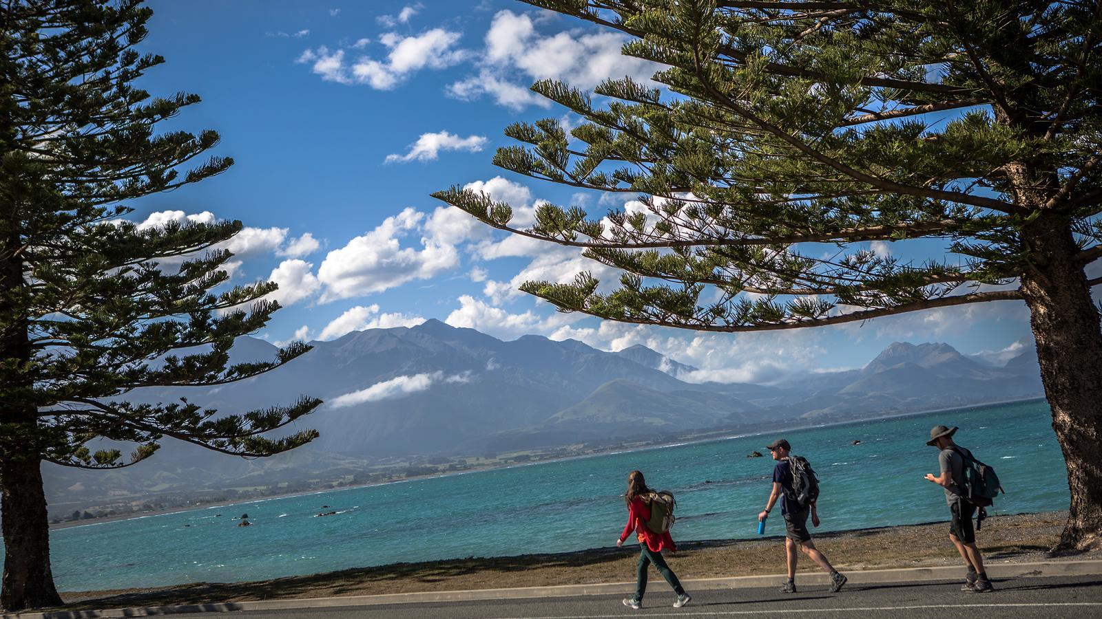 New Zealand: South Island Encompassed
