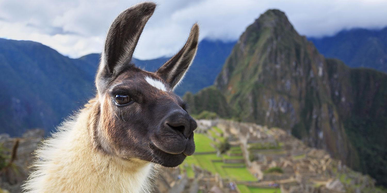 Simply Peru