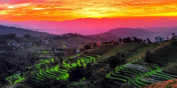 Yomaste Nepal