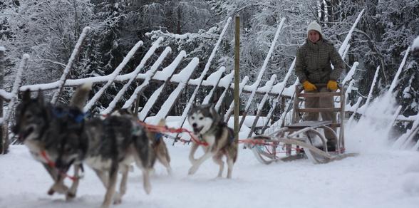 Murmansk Winter Adventures