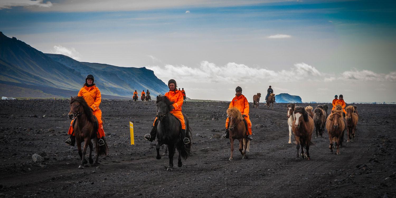 Ride wild Icelandic horses!