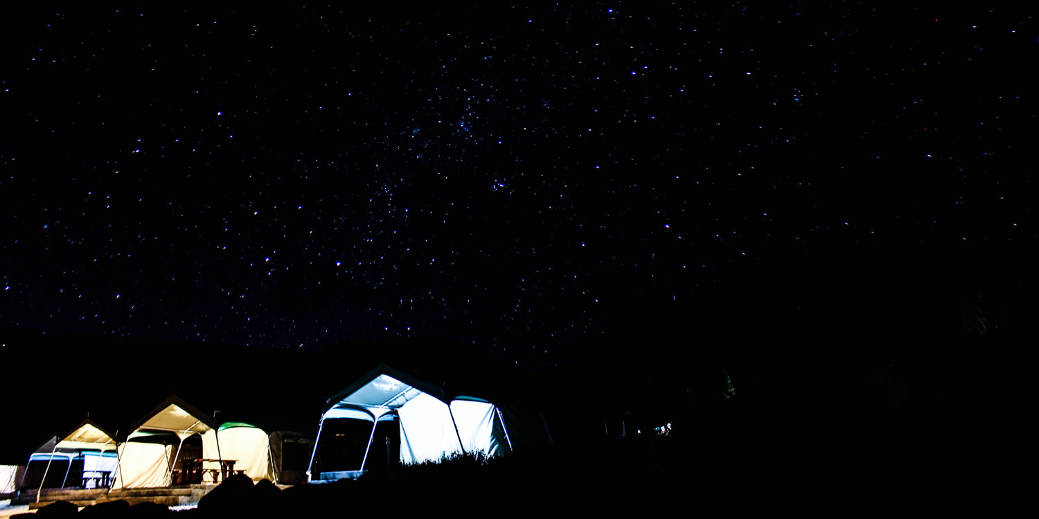 Barbeques, Big Five and Starry Nights